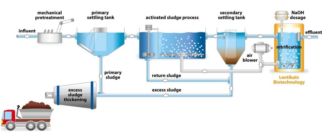 تصفیه بیولوژیکی فاضلاب با کمک باکتری های بی هوازی