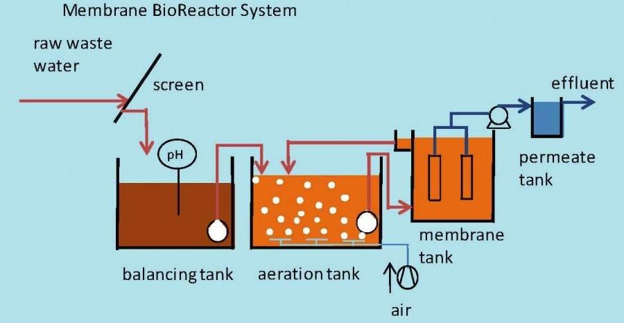 سیستم بیولوژیکی غشایی